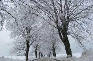 Schnee im Winter an der Ostsee