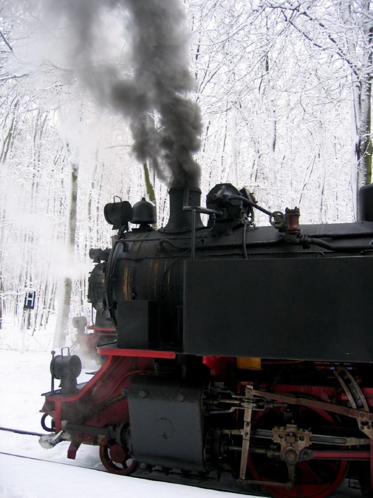 Molli Bahn im Winter