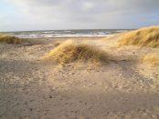 Ostsee Strand am Riedensee