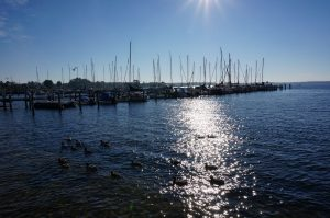 Blick vom Haffplatz auf den Hafen in Rerik