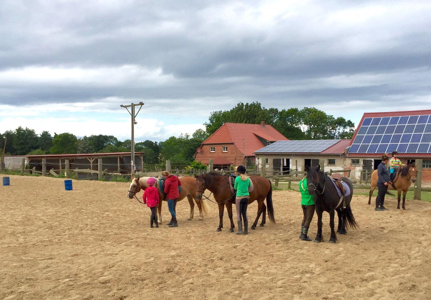 Ponnyreiten für Kinder an der Ostsee