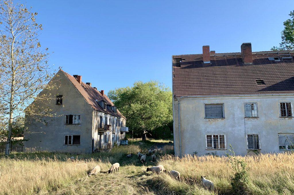 Halbinsel Wustrow